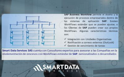 Consultoria SAP Business WorkFlow
