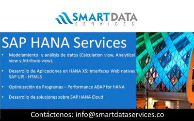 SAP HANA Services