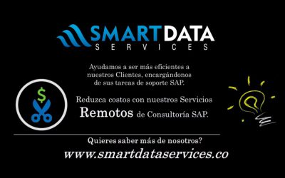 Soporte-SAP-Remoto