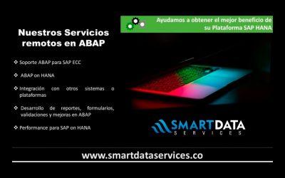 SAP ABAP HANA Servicios Remotos